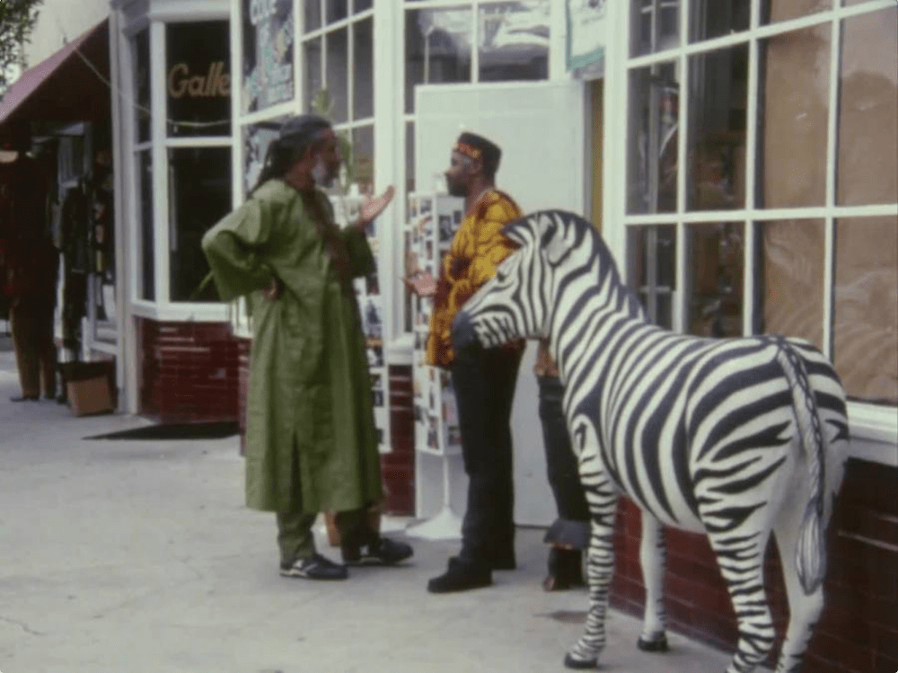 """""""When It Rains"""" and """"Final Insult by Charles Burnett"""